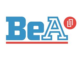 bea-300x225